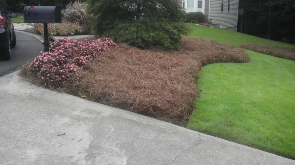 Curb Appeal with Pine Straw in Cumming GA After Photo