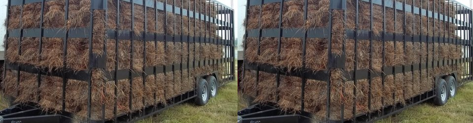 Golden Pine Straw delivers | Additional charges apply | Call us for details