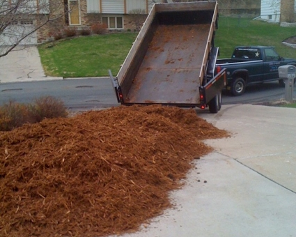 Pine Straw, Wheat Straw, Mulch & Fire Wood Delivery Available from Golden Pine Straw