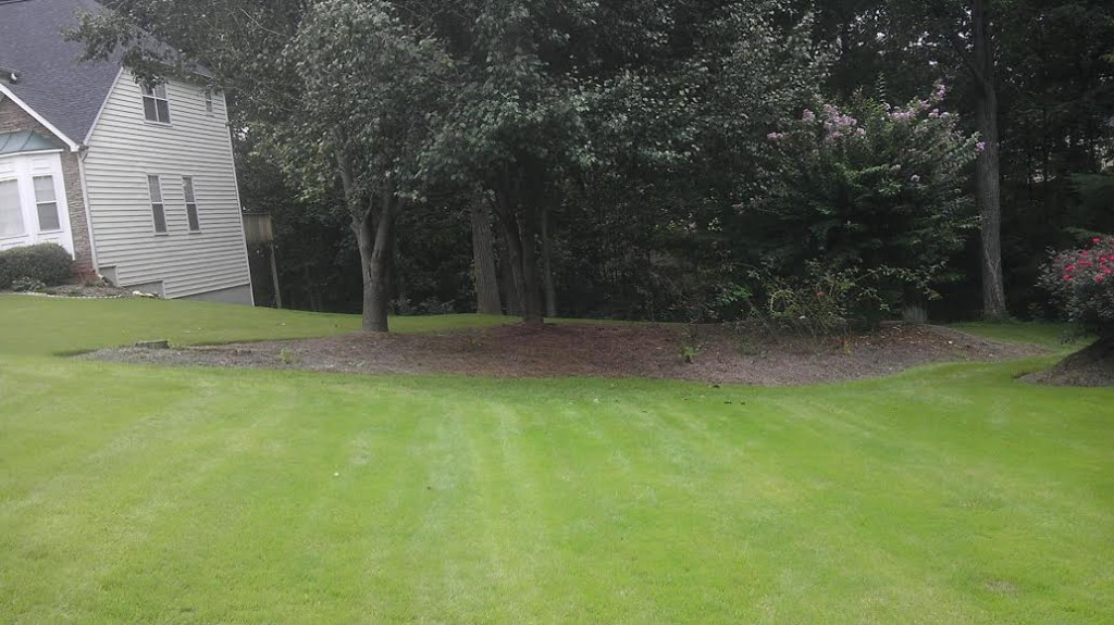 Spring Refresh with Pine Straw in Cumming GA Before Photo