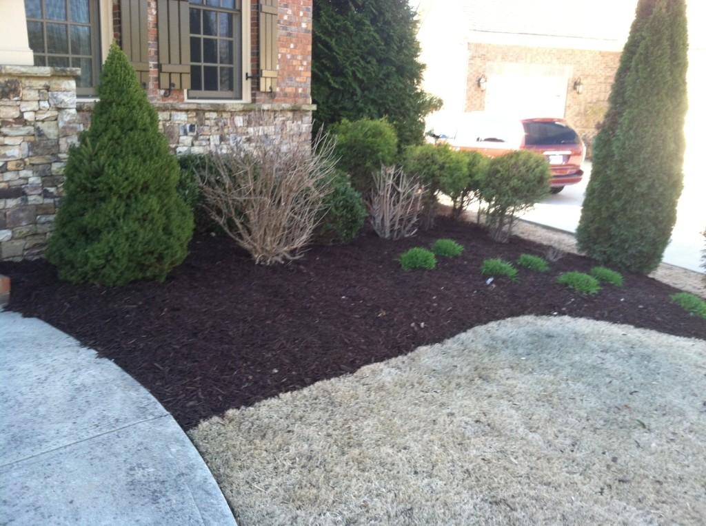 Small Bed Re-Mulch After | Cumming GA Pine Straw | Cumming GA Mulch