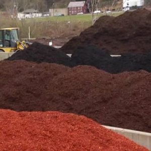 Golden Pine Straw | Bulk Mulch